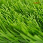 Umelá tráva MARO-BELLIN-7