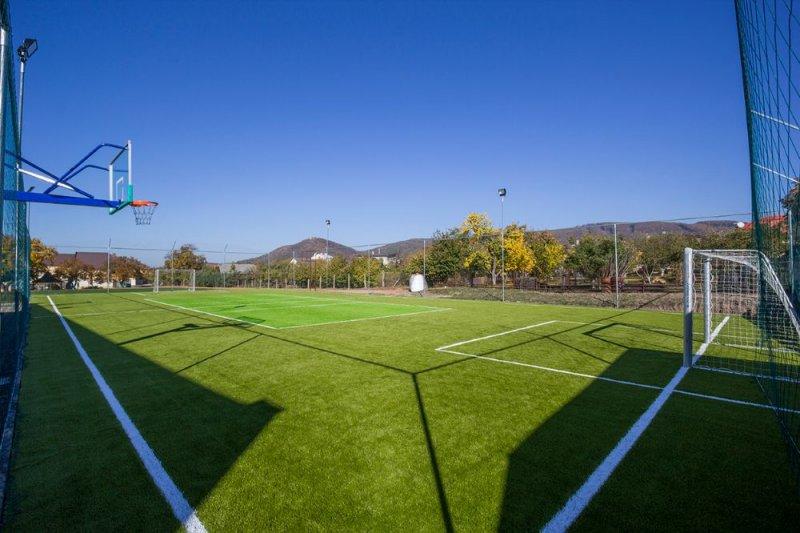 Multifunkčné ihrisko – umelá tráva - Vinné - Marotrade